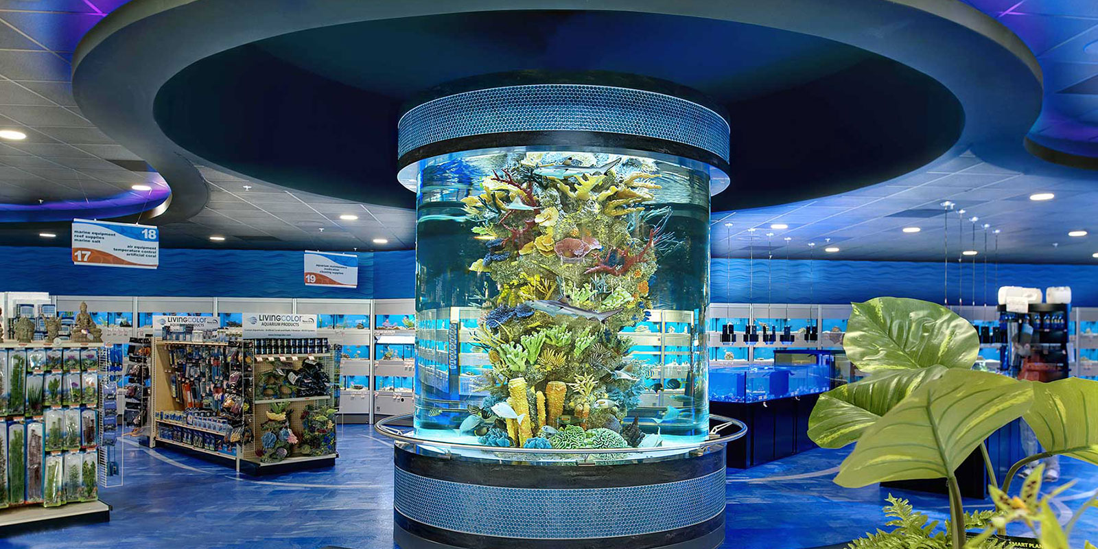 Custom Aquarium & Reef Tank Design