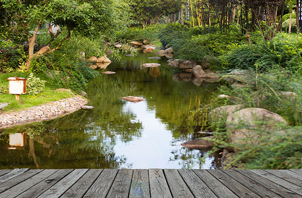 Natural swimming pools in the albany plattsburgh for Sustainable pool