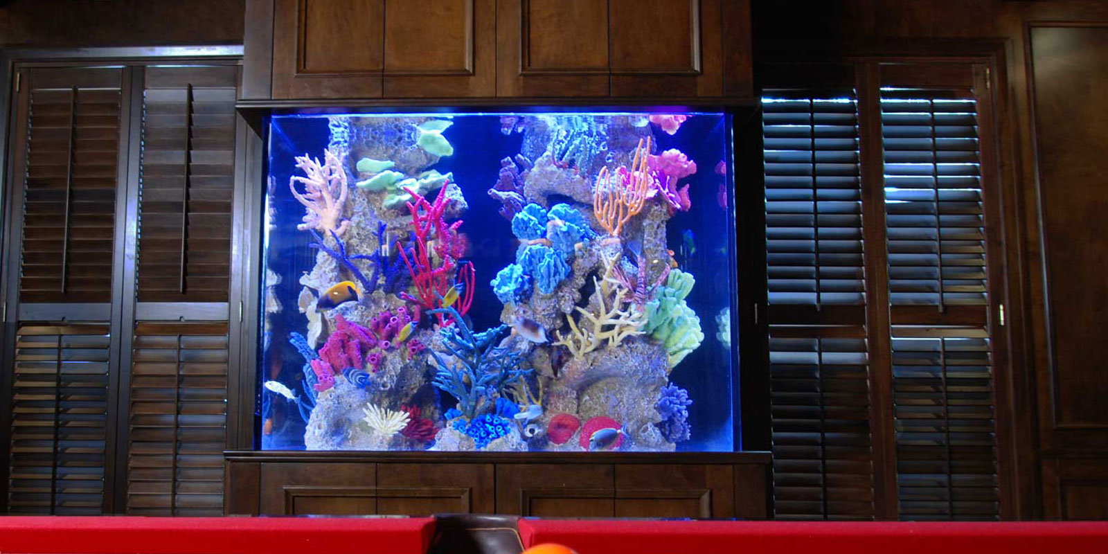 Custom Salt Water Aquariums