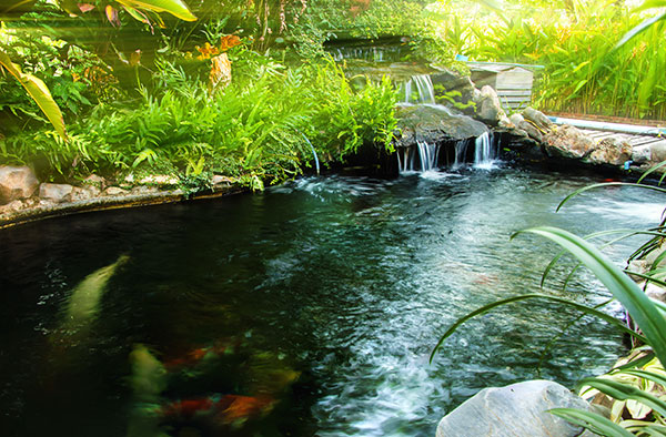 Natural Swimming Pools in the Albany, Plattsburgh & Burlington VT areas.